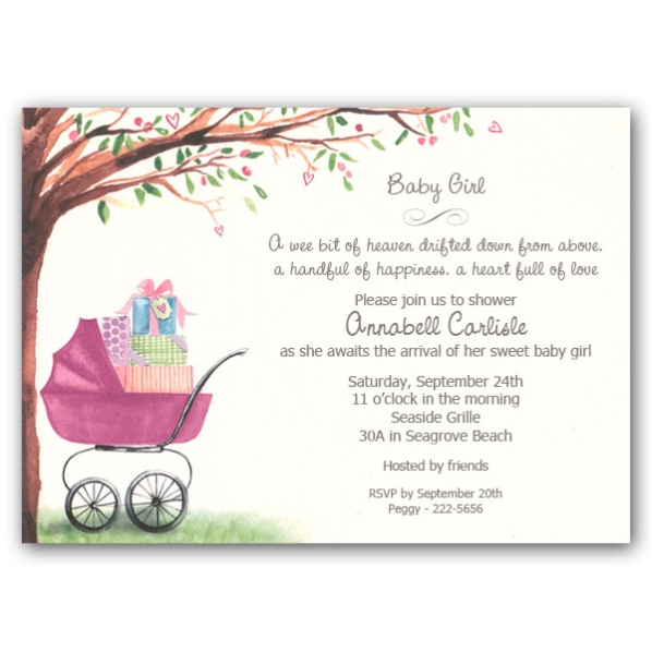 Girl Baby Shower Invites DolanPedia Invitations Template